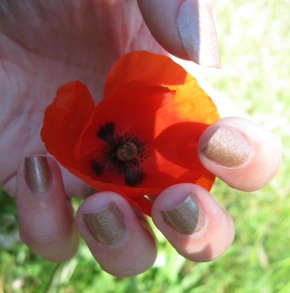 http://elle.raconte.sa.vie.cowblog.fr/images/Photos/LoveemLeaveem001.jpg